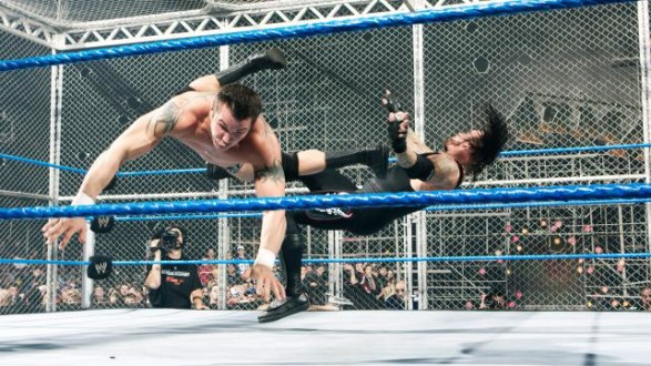 Randy-Orton-Undertaker-Hell-in-a-Cell-4