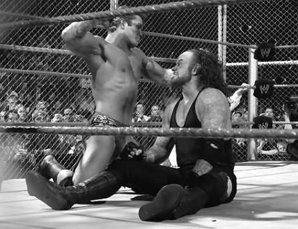 Undertaker-Randy-Orton-Hell-in-a-Cell-2
